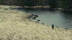 The Lobster - Yoon Jong Shin