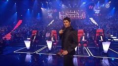 Waiting For The Night (The Voice Of Germany 2012) - Nelly Furtado, James Borges