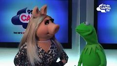 Little Things (One Directions's Cover) - The Muppets