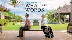 What Are Words - Evynne Hollens, The Piano Guys