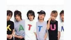 The D-Motion - Kattun